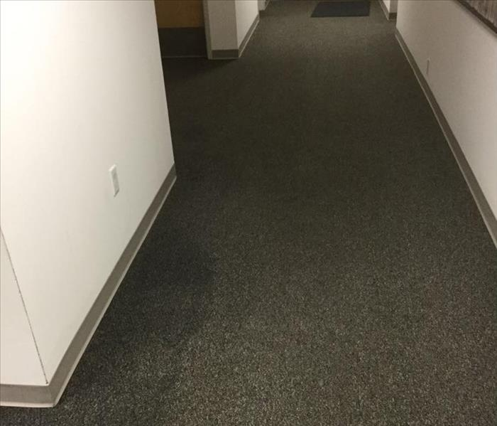 Water Loss in Hallway Before