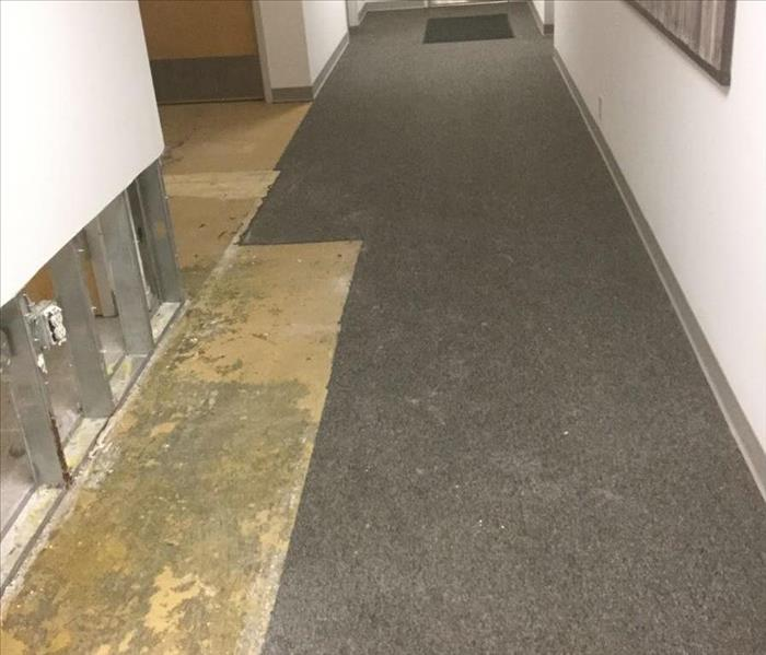 Water Extraction in Smyrna Commercial Office Space After