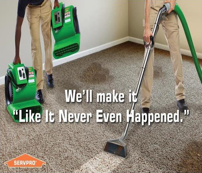 Not Your Average Carpet Cleaning Company