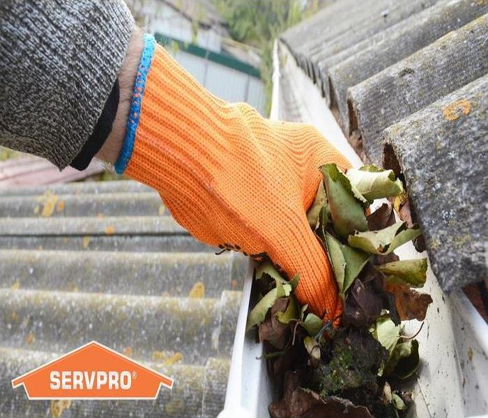 SERVPRO removing leaves from home's gutters