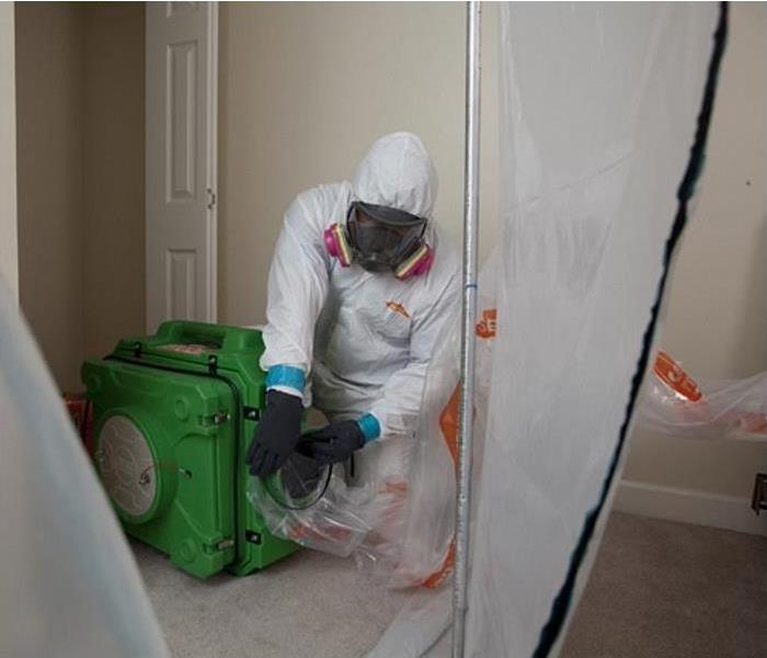 Mold Remediation Does Your House Have A Mold Issue?